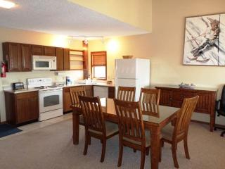 Nice 1 bedroom Apartment in Granby - Granby vacation rentals