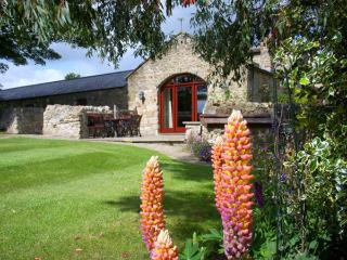 THE DOVECOTE, pet friendly, character holiday cottage, with hot tub in Gilling - Gilling West vacation rentals