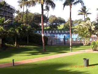 Maui Sunset 213A ~ 1 Bedroom, 2 bath ocean views @ Maui Sunset! - Kihei vacation rentals