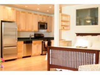 apt pics 003 - Beautiful Loft-like Garden Apartment - San Francisco - rentals