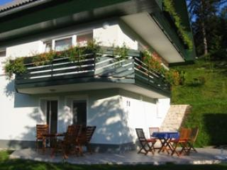 Villa Pustovrh with beautiful view on Alps - Slovenia vacation rentals
