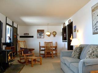 Beautiful 1 bedroom Condo in Teton Village - Teton Village vacation rentals