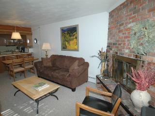 Alpenblick Unit 1 - Aspen vacation rentals
