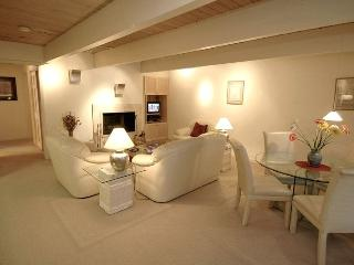 Cozy 2 bedroom Condo in Aspen - Aspen vacation rentals