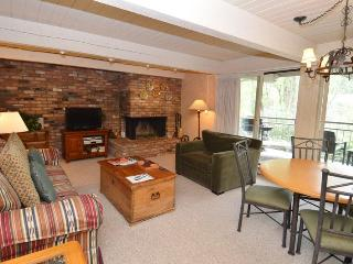 Chateau Roaring Fork Unit 24 - Aspen vacation rentals