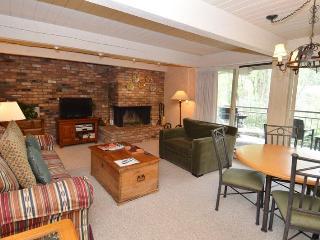 ChRoar24 - Aspen vacation rentals