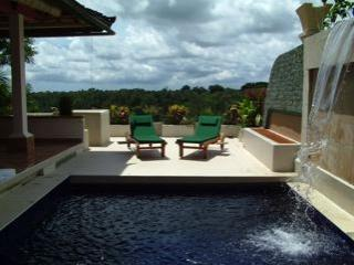 Pool looking out across the valley - Villa Taksu - Spectacular Vistas - Close to Ubud! - Sayan - rentals