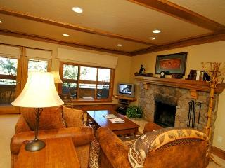 Fasching Haus Unit 380 - Aspen vacation rentals
