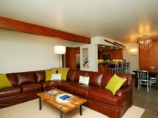 Nice Condo with Deck and Internet Access - Aspen vacation rentals