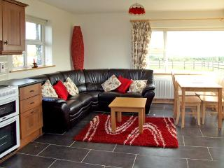 CAITLIN'S COTTAGE, family friendly, country holiday cottage, with a garden in Clashmore, County Waterford, Ref 3699 - Clashmore vacation rentals