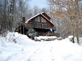 Winter view of Cinnamon Fern Chalet. - Canaan Valley 3 bedroom chalet - Canaan Valley - rentals