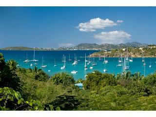 Idyllic Villa Great Cruz Bay St John USVI - Cruz Bay vacation rentals