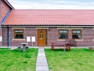 DRUMMER COTTAGE, pet friendly, with a garden in Skinningrove, Ref 3719 - Skinningrove vacation rentals