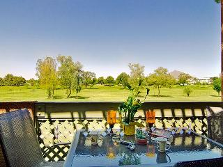 Old Town Golf View condo - Gym, Pool, Wi-Fi, Golf. - Scottsdale vacation rentals