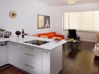 STAR - CHIC!  2 bedroom off trendy Basel Sq. - Tel Aviv vacation rentals