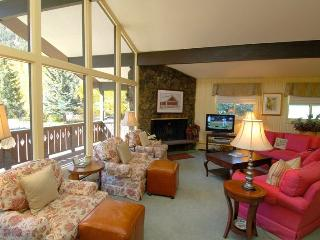Cozy 3 bedroom Condo in Aspen - Aspen vacation rentals