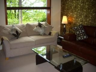 Double Sofabed and comfortable Leather Sofa - SHERBROOKE 2 - Glasgow Southside 4 Star Apartment - Glasgow - rentals