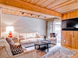 2 bedroom Apartment with Internet Access in Aspen - Aspen vacation rentals