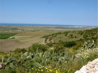 A quiet location with fantastic  views, near beach - Vejer vacation rentals