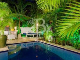 Honeymoon or Romantic Getaway Villa Seminyak - Seminyak vacation rentals