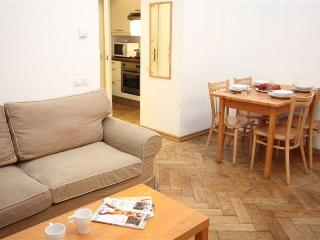 ApartmentsApart DownTown 11 - 1B - Prague vacation rentals