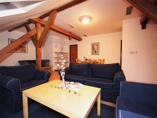 ApartmentsApart Jungmann B3 - Superior - Prague vacation rentals