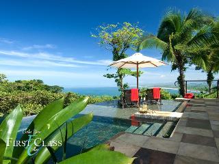 NIGHTLY CHEF SERVICES & $500 CONCIERGE CREDIT - Manuel Antonio National Park vacation rentals