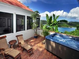 Windwardside Main House: views, spa. elegant & qui - Coral Bay vacation rentals