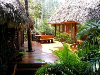 Private riverfront/ jungle villa, kitchen, hot tub - Mountain Pine Ridge vacation rentals