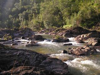 Private riverfront/ jungle villa, kitchen, hot tub - Mountain Pine Ridge vacation rentals