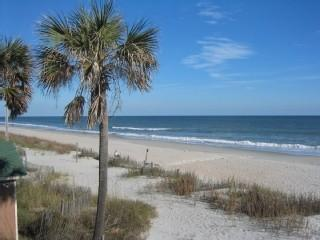 5 BR  Beach House: Week of August 20 only 1000!! - Myrtle Beach vacation rentals