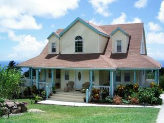 Front View of House - Nevis Vacation House with Pool & views of mountain - Nevis - rentals