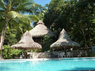 Ceiba Tree Lodge, jungle eco resort in Pico Bonito - La Ceiba vacation rentals