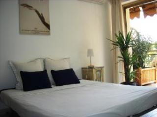 Belle Bleu Vacation Rental with a Terrace, Cannes - Image 1 - Cannes - rentals