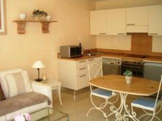 Palais Moliere Cannes 1 Bedroom Flat in Excellent Area - Image 1 - Cannes - rentals