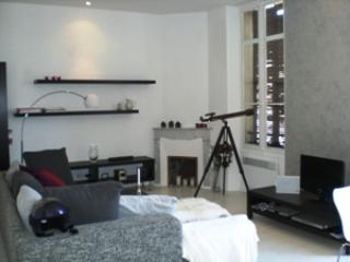 Fantastic 1 Bedroom Apartment in Great Area of Cannes, Roland Garros - Image 1 - Cannes - rentals