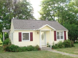 Lakefront House for Rent on Lovely Little York Lak - Little York vacation rentals