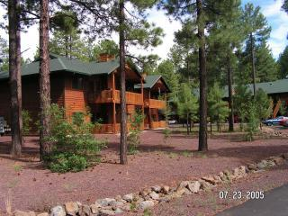 100% Satisfaction Guarantee!...Livin in the Pines! - Pinetop vacation rentals