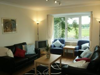 Comfortable 2 bedroom Apartment in Glasgow - Glasgow vacation rentals