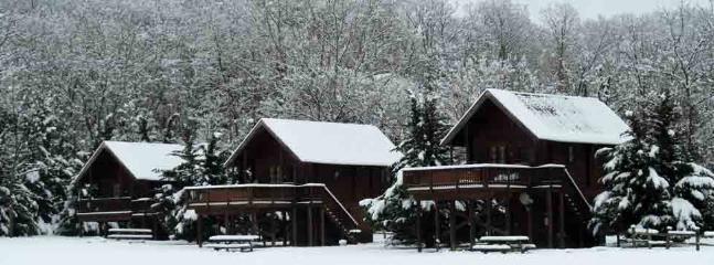 Snow fall at cabins - Shenandoah River Log Cabins, Luray, Virginia - Luray - rentals