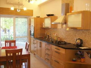 kitchenvew - Gan Rechavya Green Fields Kosher Luxury Apartment - Jerusalem - rentals