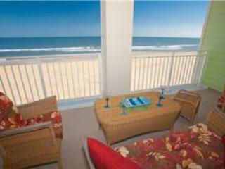 A-204 Oceanfront Oasis - Image 1 - Virginia Beach - rentals