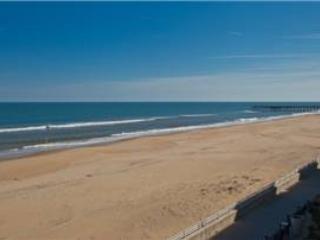 A-207 Endless Summer - Image 1 - Virginia Beach - rentals