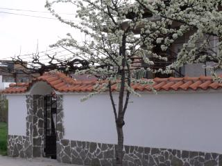 A private villa in the heart of Hissar Spa Town - - Plovdiv Province vacation rentals