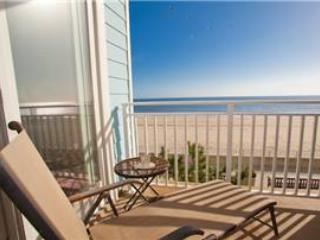 B-107 Life Is Good - Image 1 - Virginia Beach - rentals