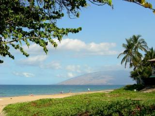 Kihei Kai Nani #218 Awesome Condo-Ocean View + Mt - Kihei vacation rentals