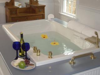 Alexander Hamilton House Beautiful B&B in Cape Cod - Mashpee vacation rentals