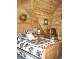 Cozy 3 bedroom Cabin in Nashville - Nashville vacation rentals