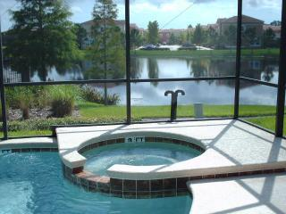 DorysSpa - TERRA VERDE RESORT LAKESIDE NEAR CLUBHOUSE WIFI - Kissimmee - rentals