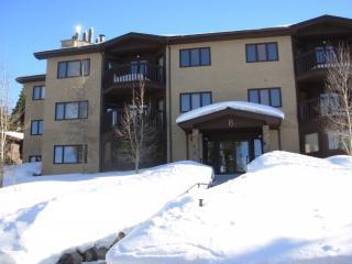 Woods Manor Condominiums - Breck- Save $100/night - Breckenridge vacation rentals